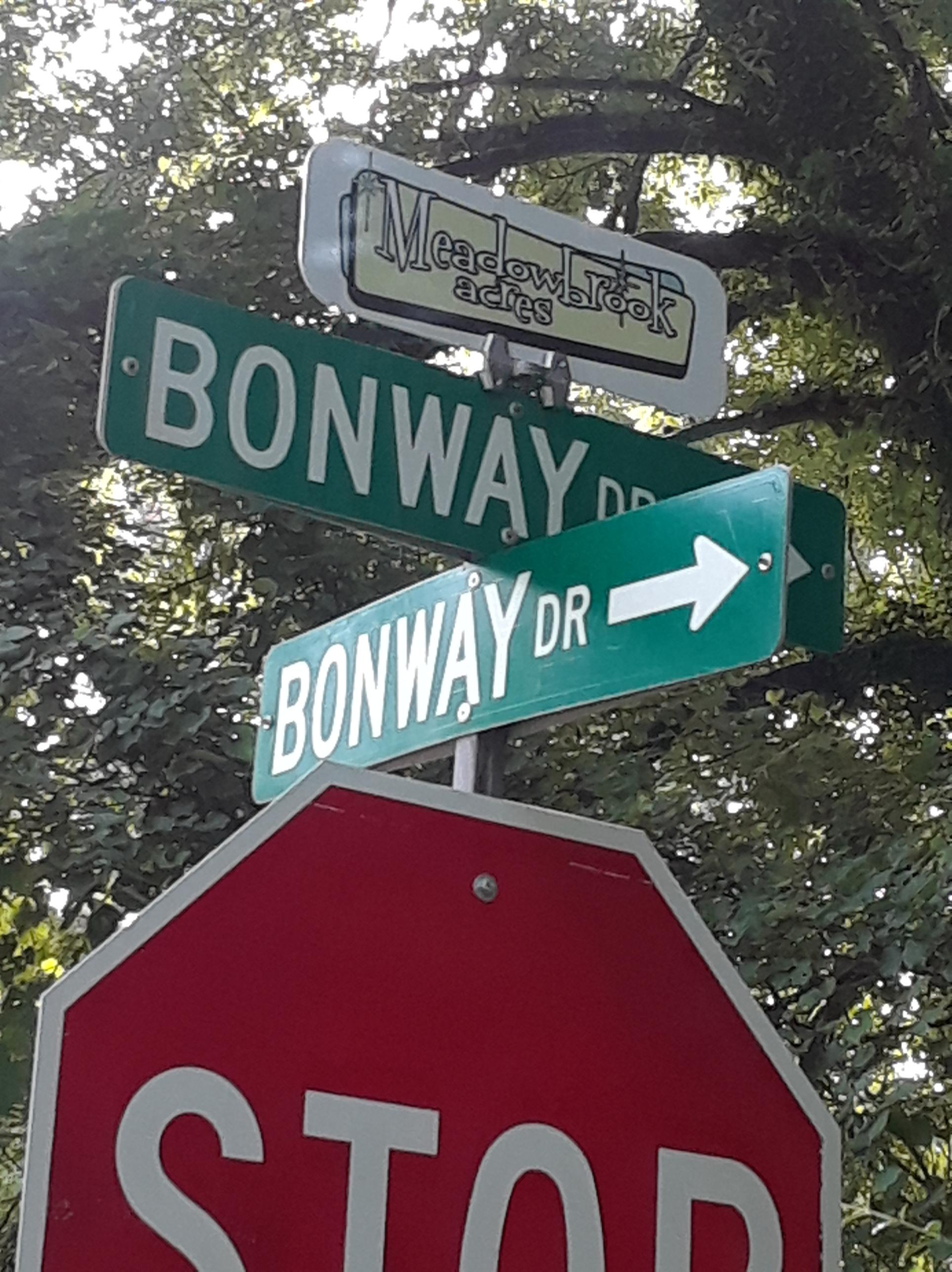 Decatur Neighborhood Meadowbrook Acres Street Sign Toppers